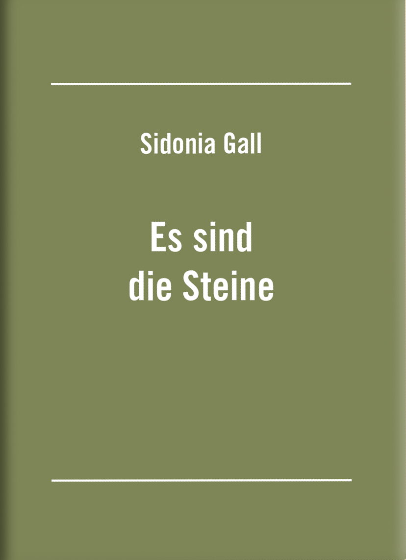 cover_es-sind-die-steine